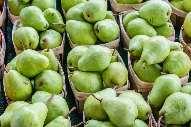 pears in fall
