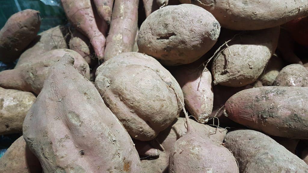 sweet potato fall