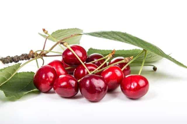 best cherry pitters