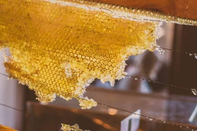 fresh beeswax wraps